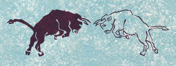 Wandschablone Tiere Stier