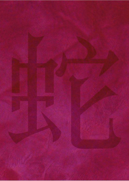 Wandschablone Chin. Zeichen Schlange