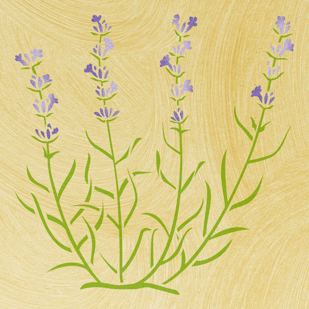 Wandschablone Lavendel floral