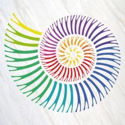 Ammonito